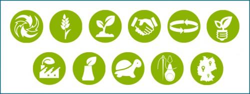 Klimaschutz durch Greenpicks Nachhaltigkeitskriterien