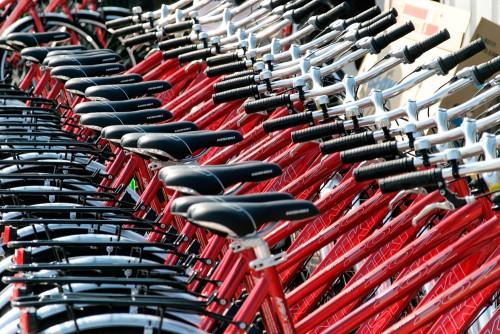 Klimaschutz: Umweltfreundliche Mobilität per Fahrrad